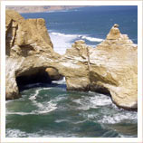 Trips to Paracas